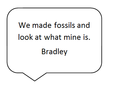bradley.PNG