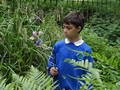 forest school week 3 010.JPG