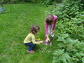 forest school week 3 014.JPG