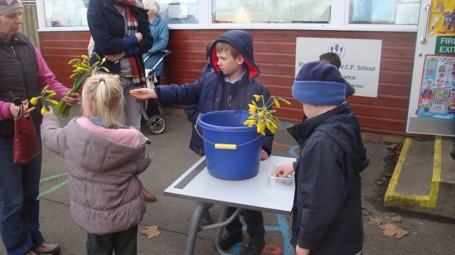 For money week the Otters pick daffodils, counted them into bunches of 10, sold them and added up all the money they raised