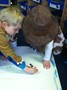 Children drew maps to show Max's journey to where the wild things are