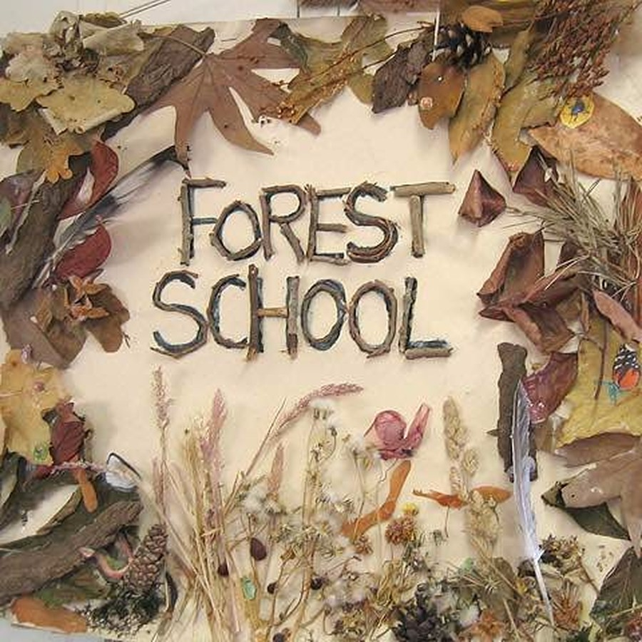 Image result for forest school