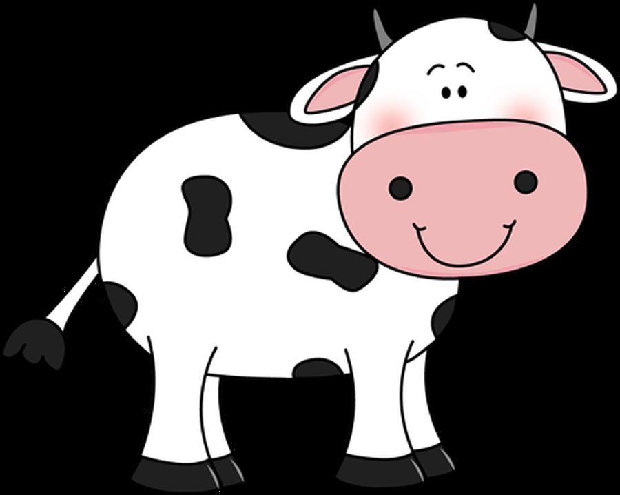 Do Cows drink milk?