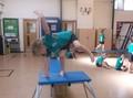 Learning to balance (14).JPG