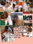 cross curricular maths.JPG