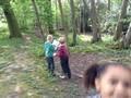 woods 013.jpg