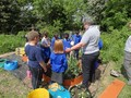 forest school and grow to learn 027.JPG