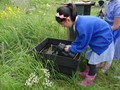 forest school and grow to learn 037.JPG