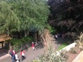 Zoo 3.jpg