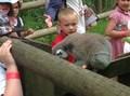 Zoo 10.jpg