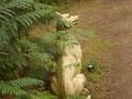 sculpture park 024.JPG