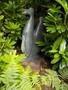 sculpture park 098.JPG