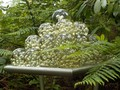sculpture park 103.JPG