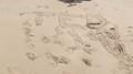 beach (26).JPG