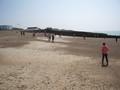 beach 2 (7).JPG