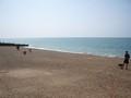 beach 2 (8).JPG
