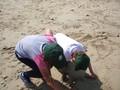 beach 2 (15).JPG