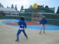 fencing gr4 (10).JPG