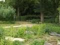 Sensory Garden 5.JPG