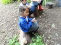 Forest School Week 6 009.JPG