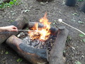 Forest School Week 6 012.JPG