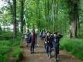 Forest Schools Y3 011.JPG