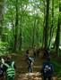 Forest Schools Y3 012.JPG