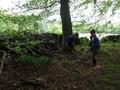 Forest Schools Y3 049.JPG