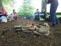 Forest Schools Y3 053.JPG