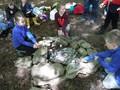 Forest Schools Y3 059.JPG