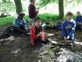 Forest Schools Y3 066.JPG