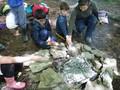 Forest Schools Y3 072.JPG