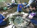 Forest Schools Y3 075.JPG
