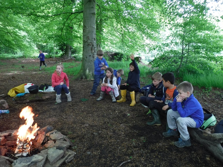 A Forest School session at Linacre