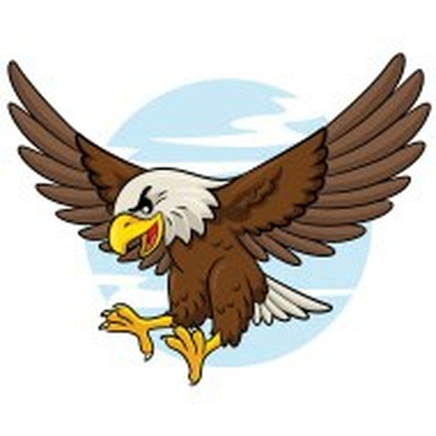 Eagle Y6