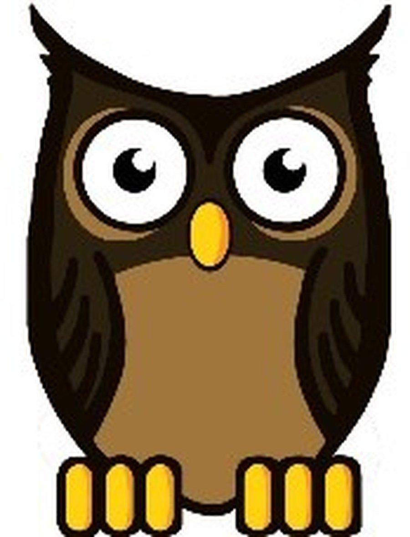 Owl Y6