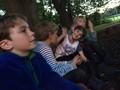 WH Campfire (4).JPG