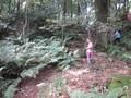 forest 7 sept 16 024.JPG