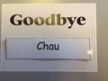 Goodbye photo.jpeg