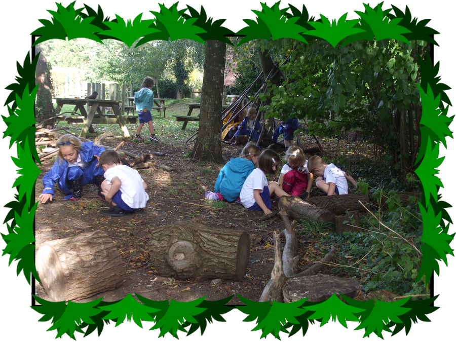 Click on the image to see year 1 exploring forest school with reception
