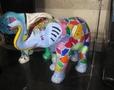 Elephant herd7.jpg
