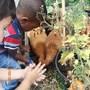 looking after the nursery pets.JPG