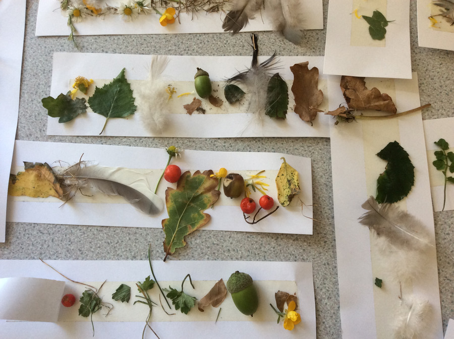 We hunted for natural treasures in the school grounds as part of our Science work on Seasons.