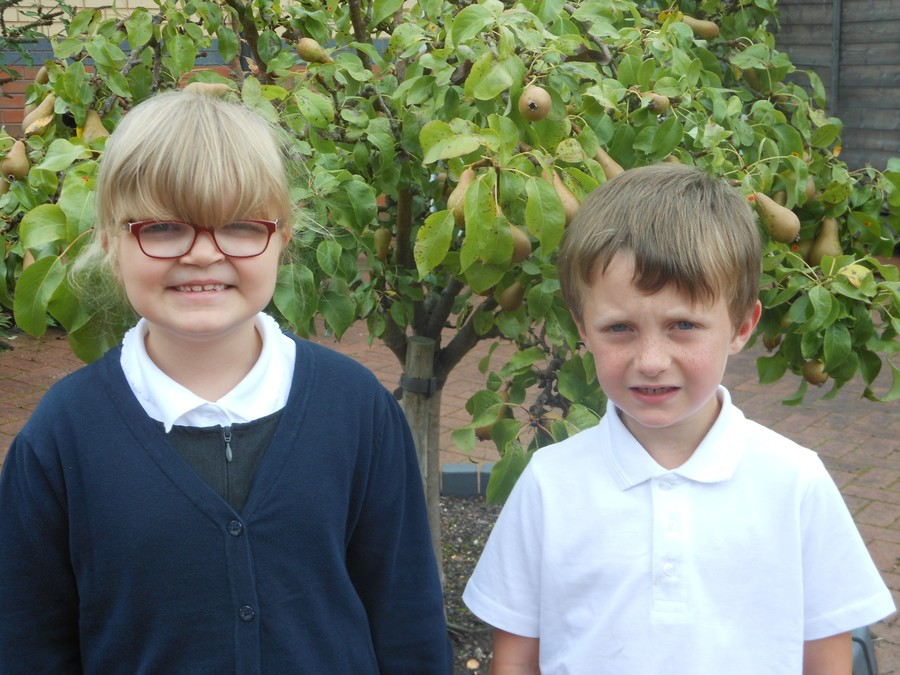 Year Two School Council Members