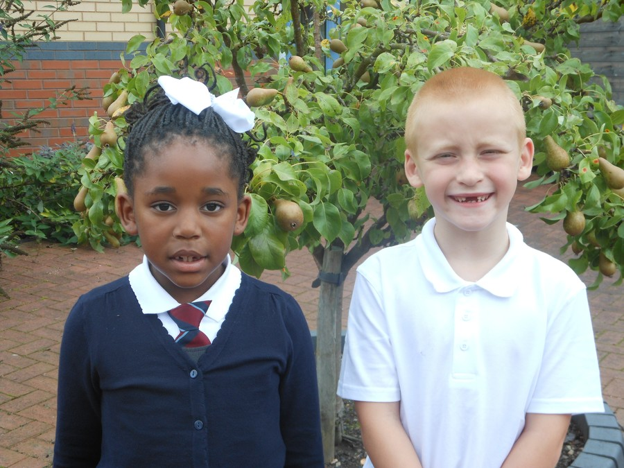 Year Two Eco Knights