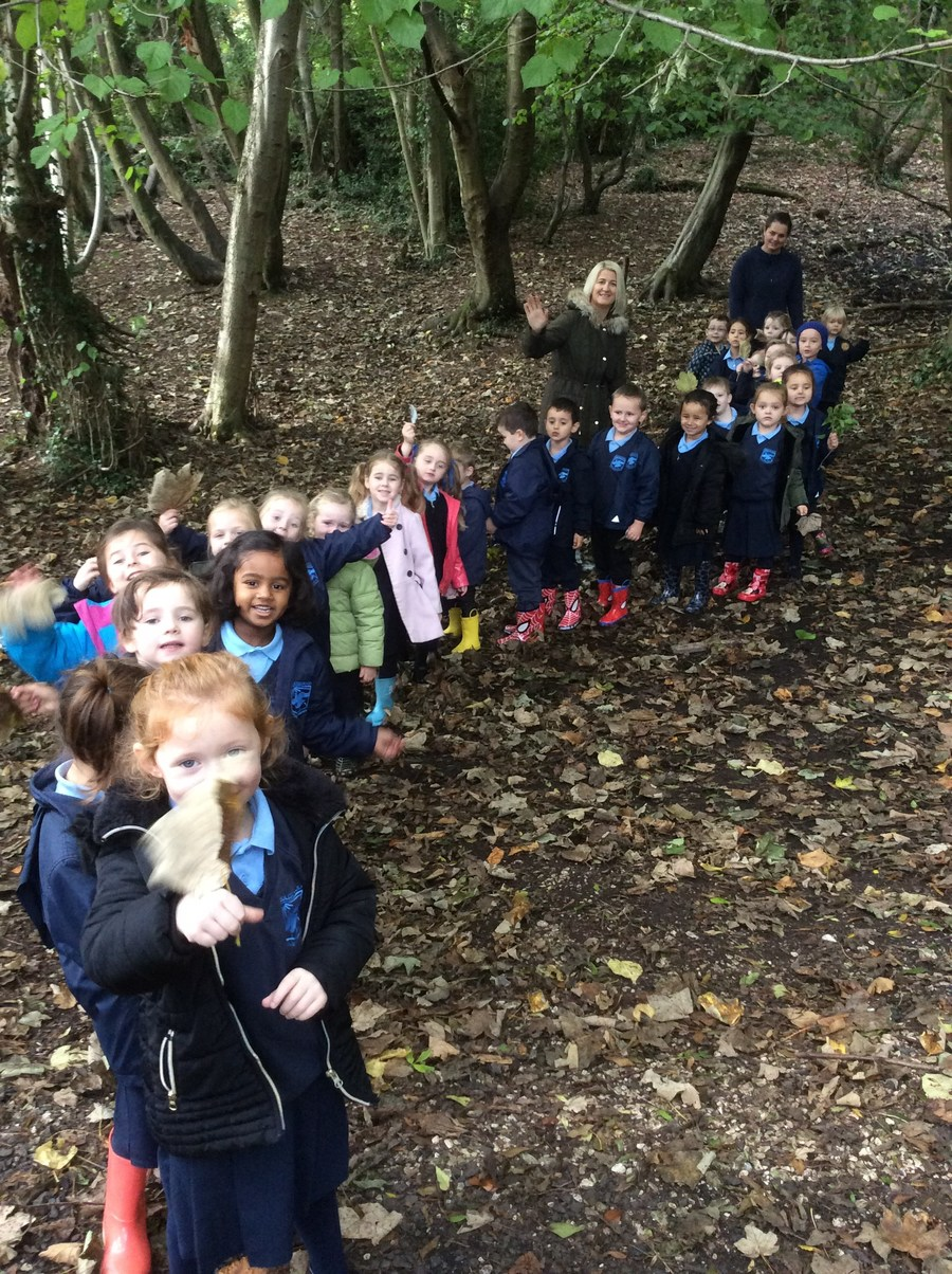 Miss McDowells Class in the woods
