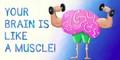 brainmuscle.jpg