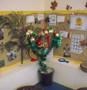 Nursery (4).JPG