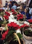 Poinsettia Baskets (1).JPG