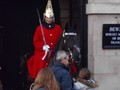 19 Duck Tours - seeing the sights 10 Horseguards Parade.JPG
